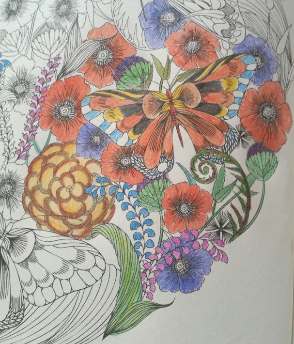 colouring1